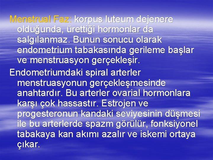 Menstrual Faz: korpus luteum dejenere olduğunda, ürettiği hormonlar da salgılanmaz. Bunun sonucu olarak endometrium