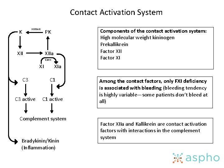 Contact Activation System HMWK K Components of the contact activation system: High molecular weight