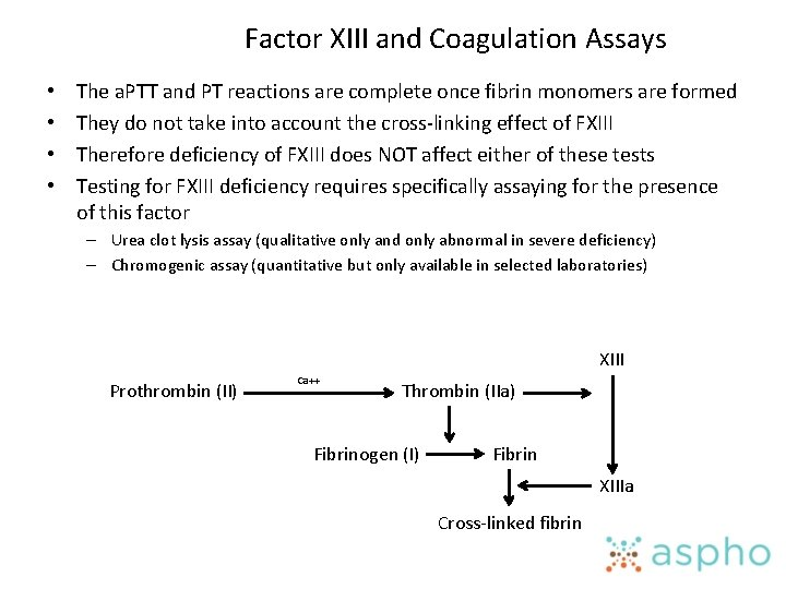 Factor XIII and Coagulation Assays • • The a. PTT and PT reactions are