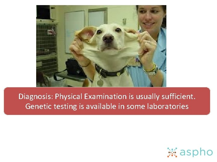 Diagnosis: Physical Examination is usually sufficient. Genetic testing is available in some laboratories