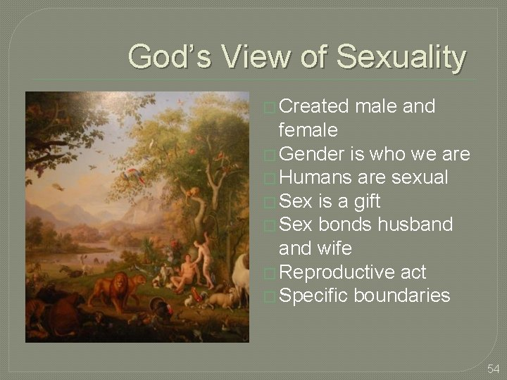 God's View of Sexuality � Created male and female � Gender is who we