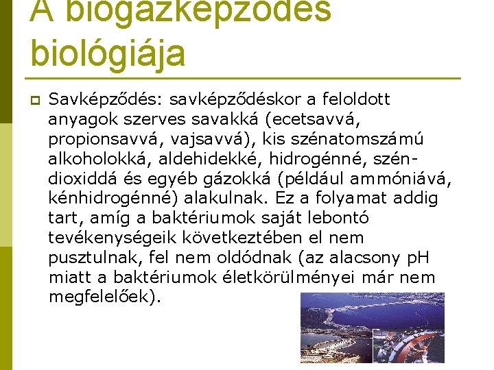 A biogázképződés biológiája p Savképződés: savképződéskor a feloldott anyagok szerves savakká (ecetsavvá, propionsavvá, vajsavvá),