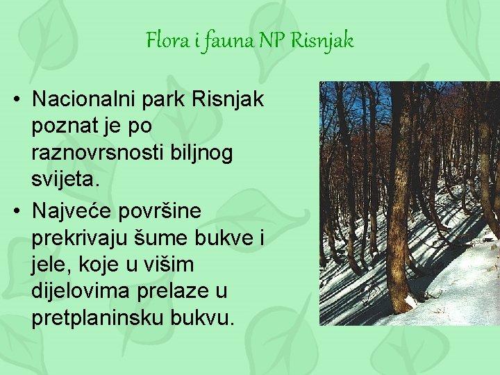 Flora i fauna NP Risnjak • Nacionalni park Risnjak poznat je po raznovrsnosti biljnog