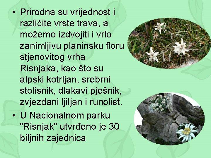 • Prirodna su vrijednost i različite vrste trava, a možemo izdvojiti i vrlo