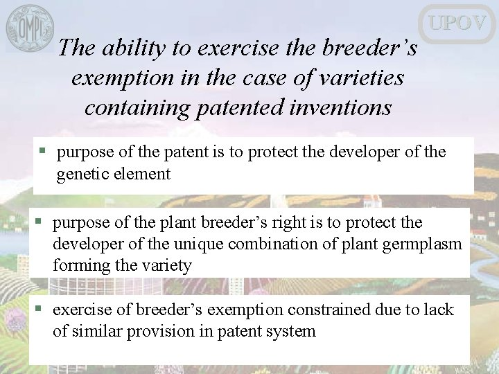 The ability to exercise the breeder's exemption in the case of varieties containing patented