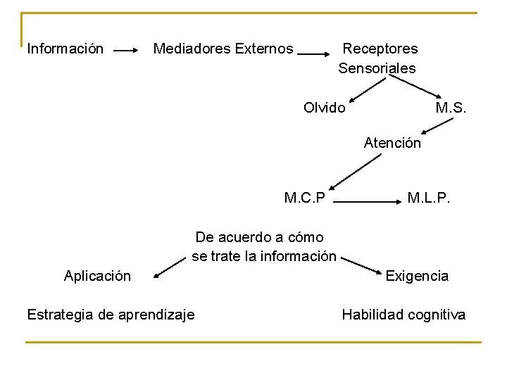 Información Mediadores Externos Receptores Sensoriales Olvido M. S. Atención M. C. P M. L.