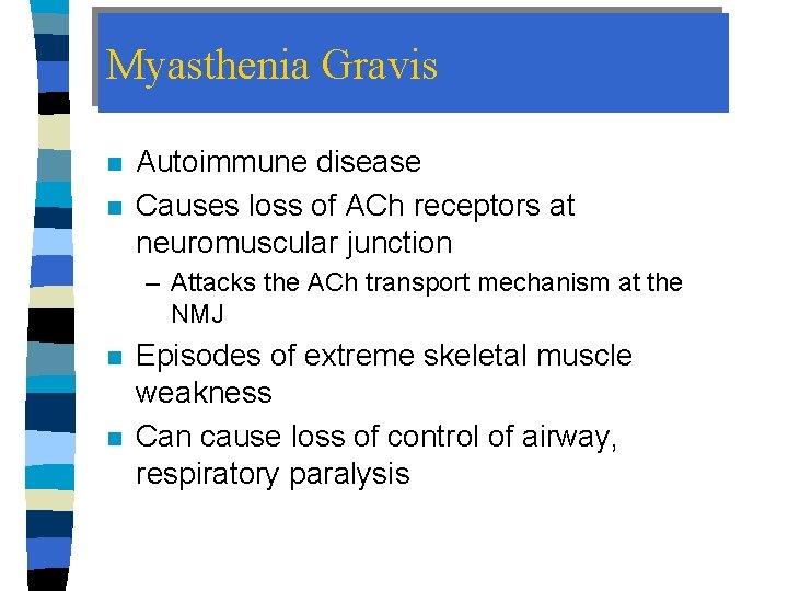Myasthenia Gravis n n Autoimmune disease Causes loss of ACh receptors at neuromuscular junction