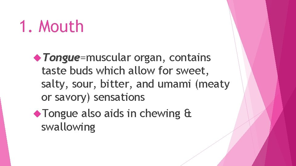1. Mouth Tongue=muscular Tongue organ, contains taste buds which allow for sweet, salty, sour,