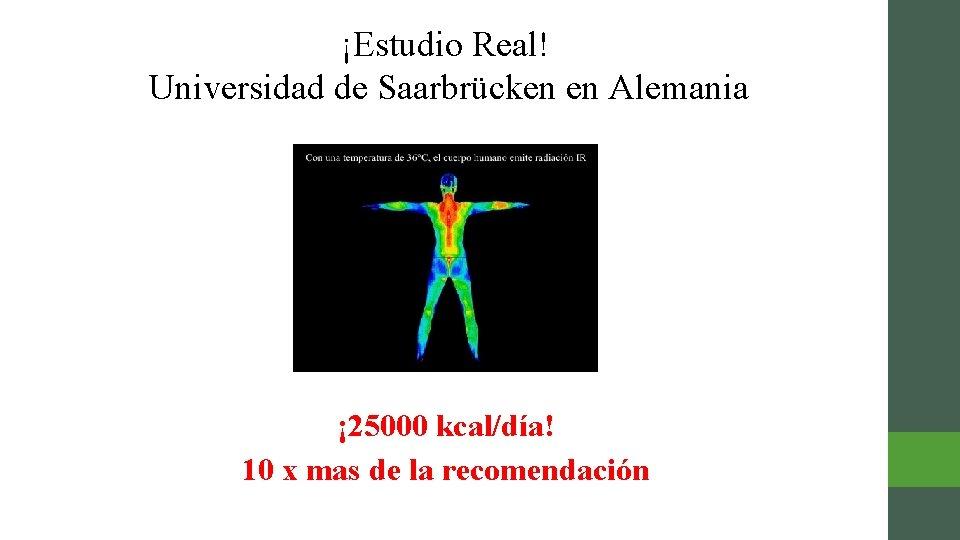 ¡Estudio Real! Universidad de Saarbrücken en Alemania ¡ 25000 kcal/día! 10 x mas de