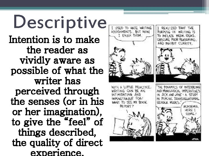 Descriptive Intention is to make the reader as vividly aware as possible of what