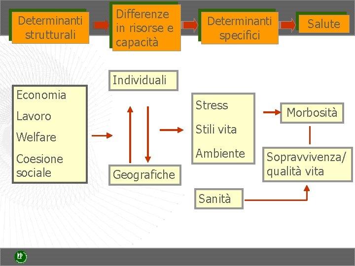 Determinanti strutturali Differenze in risorse e capacità Determinanti specifici Salute Individuali Economia Stress Lavoro