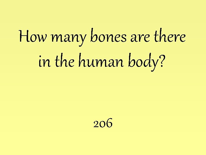 How many bones are there in the human body? 206