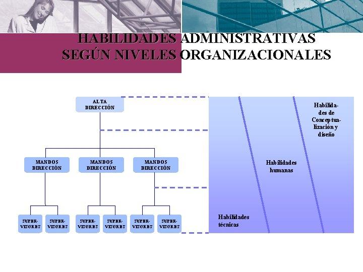 HABILIDADES ADMINISTRATIVAS SEGÚN NIVELES ORGANIZACIONALES ALTA DIRECCIÓN MANDOS DIRECCIÓN SUPERVISORES Habilidades de Conceptualización y
