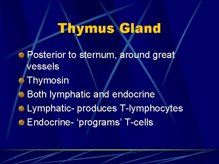 Thymus Gland Posterior to sternum, around great vessels Thymosin Both lymphatic and endocrine Lymphatic-
