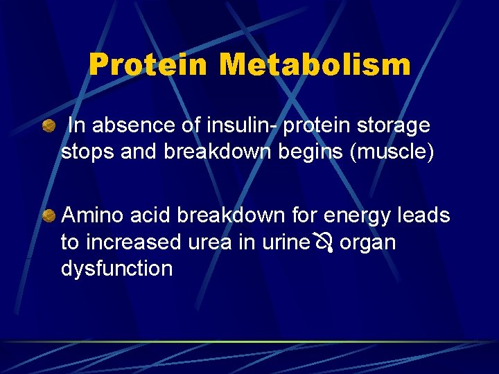 Protein Metabolism In absence of insulin- protein storage stops and breakdown begins (muscle) Amino
