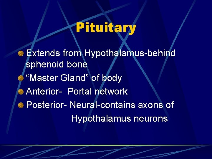 """Pituitary Extends from Hypothalamus-behind sphenoid bone """"Master Gland"""" of body Anterior- Portal network Posterior-"""