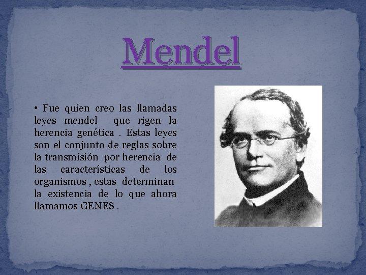 Mendel • Fue quien creo las llamadas leyes mendel que rigen la herencia genética.