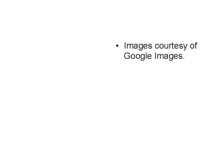• Images courtesy of Google Images.
