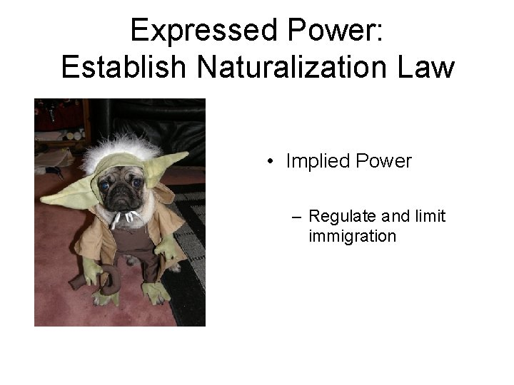 Expressed Power: Establish Naturalization Law • Implied Power – Regulate and limit immigration