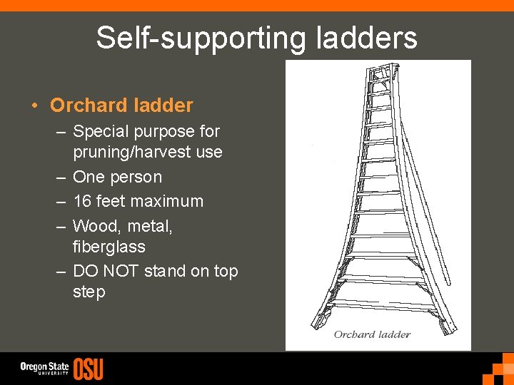 Self-supporting ladders • Orchard ladder – Special purpose for pruning/harvest use – One person