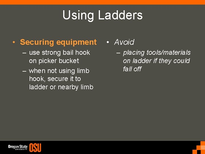 Using Ladders • Securing equipment – use strong bail hook on picker bucket –