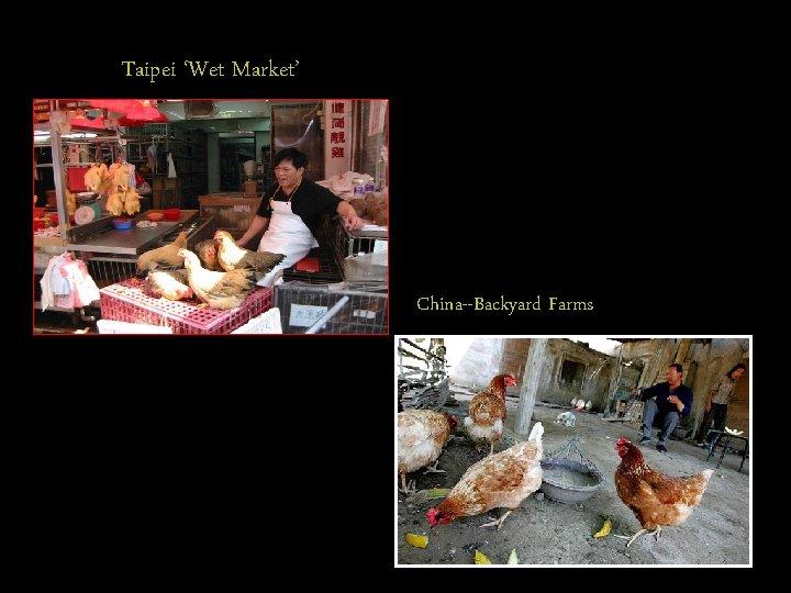 Taipei 'Wet Market' China--Backyard Farms
