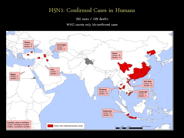 H 5 N 1: Confirmed Cases in Humans 192 cases / 109 deaths WHO