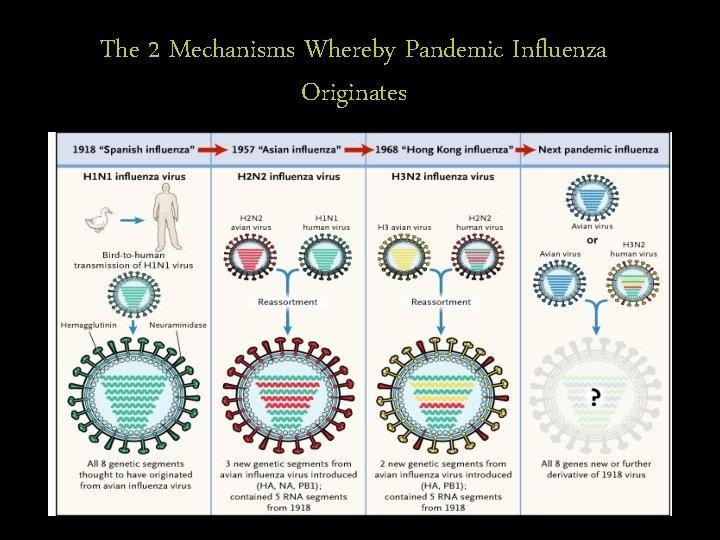 The 2 Mechanisms Whereby Pandemic Influenza Originates