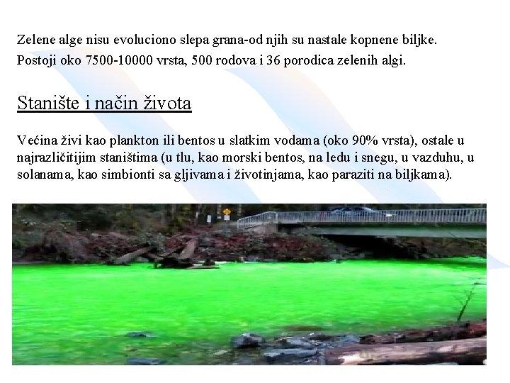 Zelene alge nisu evoluciono slepa grana-od njih su nastale kopnene biljke. Postoji oko 7500