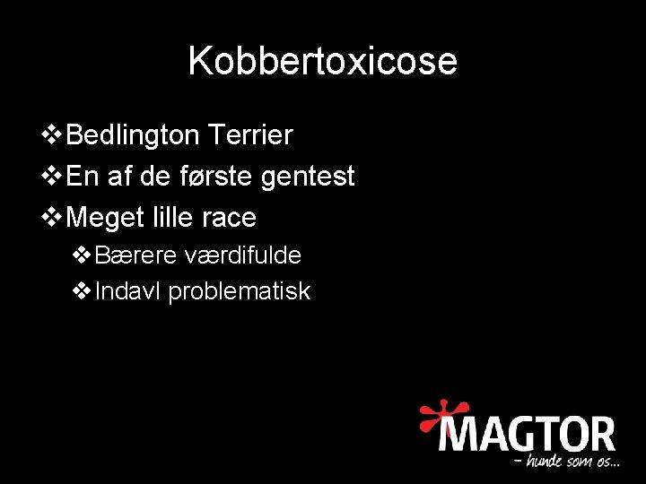 Kobbertoxicose v. Bedlington Terrier v. En af de første gentest v. Meget lille race