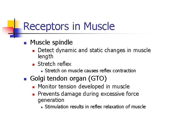 Receptors in Muscle spindle n n Detect dynamic and static changes in muscle length