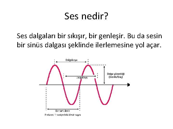 Ses nedir? Ses dalgaları bir sıkışır, bir genleşir. Bu da sesin bir sinüs dalgası