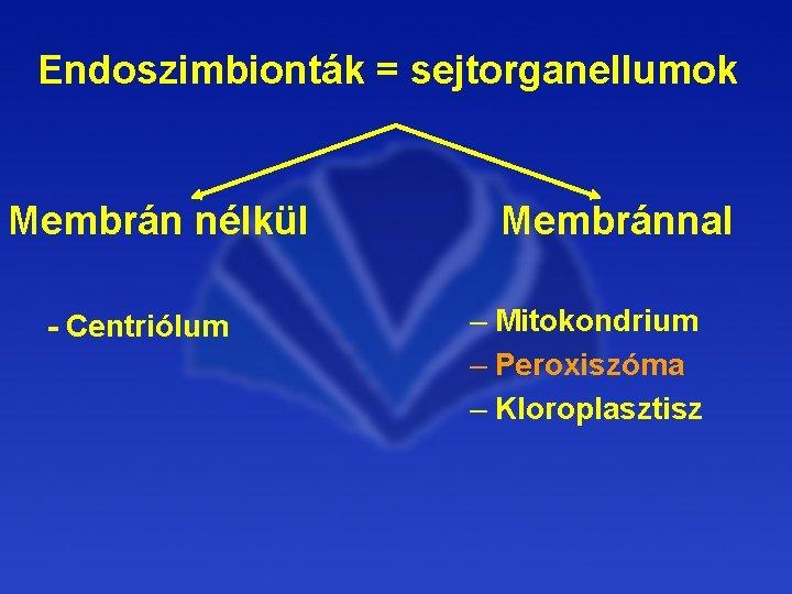 mitokondrium parazita)