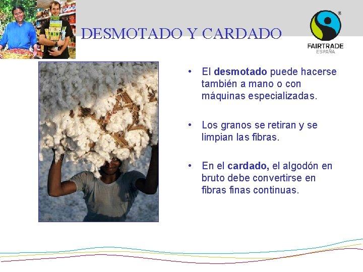 DESMOTADO Y CARDADO • El desmotado puede hacerse también a mano o con máquinas