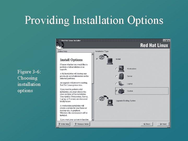 Providing Installation Options Figure 3 -6: Choosing installation options