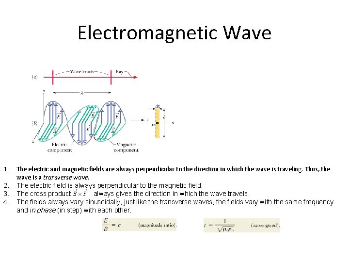 Electromagnetic Wave 1. 2. 3. 4. The electric and magnetic fields are always perpendicular
