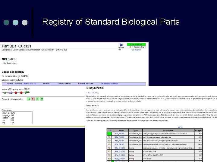 Registry of Standard Biological Parts