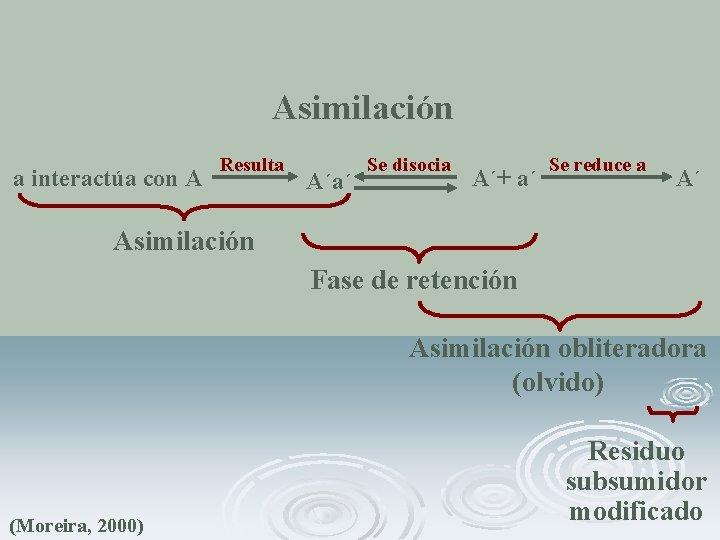 Asimilación a interactúa con A Resulta A´a´ Se disocia A´+ a´ Se reduce a