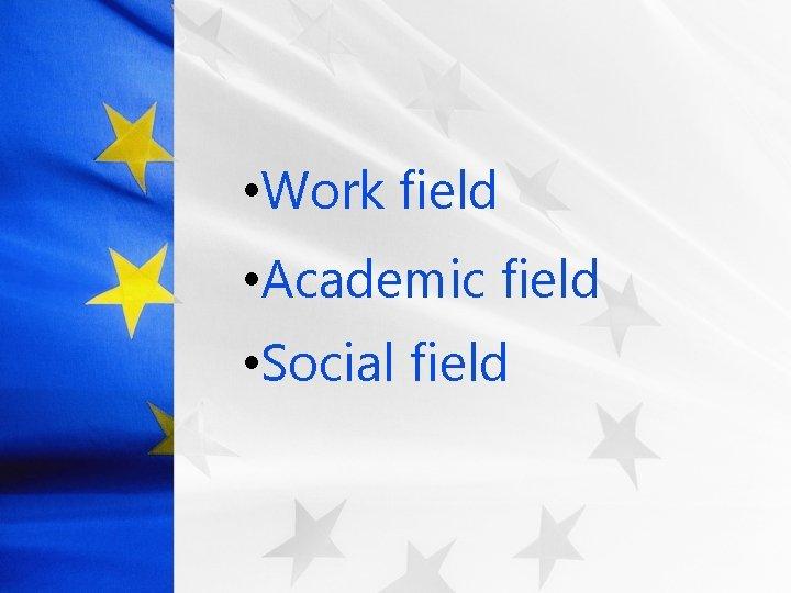 • Work field • Academic field • Social field