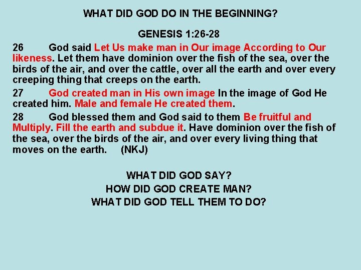 WHAT DID GOD DO IN THE BEGINNING? GENESIS 1: 26 -28 26 God said