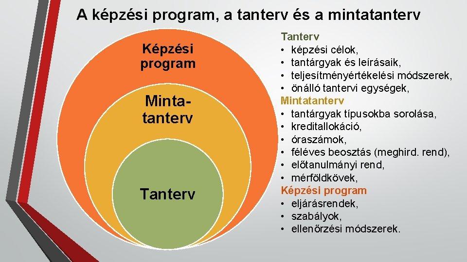 A képzési program, a tanterv és a mintatanterv Képzési program Mintatanterv Tanterv • képzési
