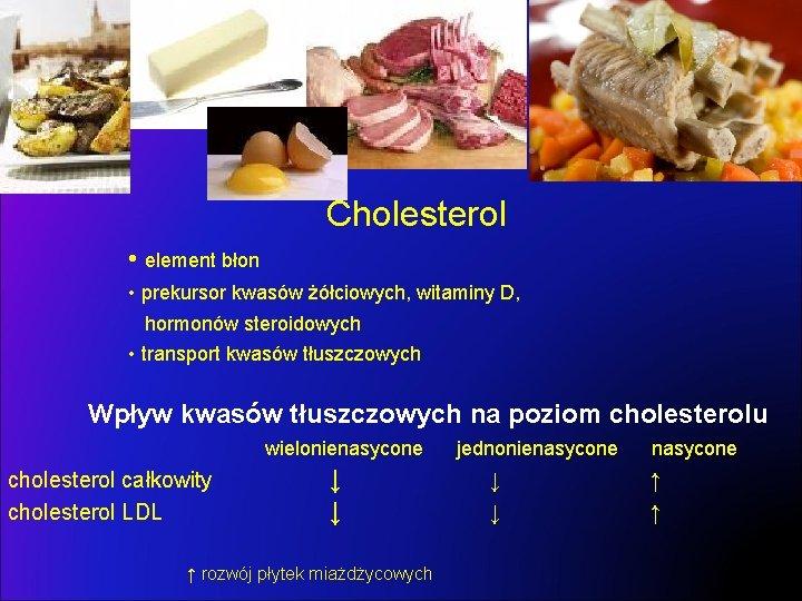 Cholesterol • element błon • prekursor kwasów żółciowych, witaminy D, hormonów steroidowych • transport