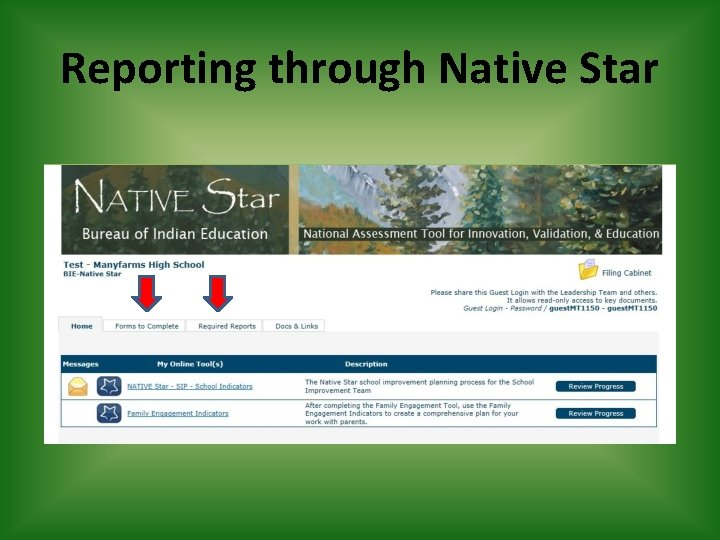 Reporting through Native Star