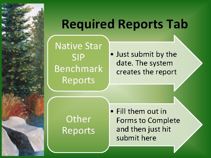 Required Reports Tab Native Star SIP Benchmark Reports • Just submit by the date.