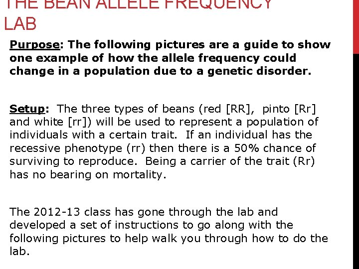 THE BEAN ALLELE FREQUENCY LAB Purpose: The following pictures are a guide to show