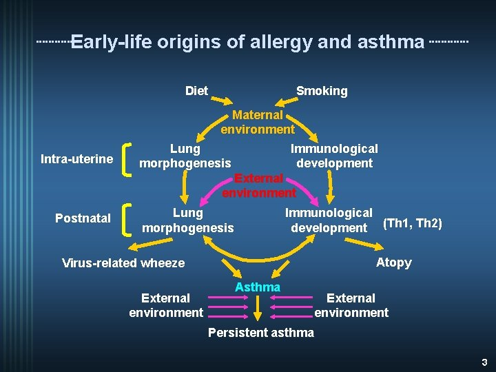Early-life origins of allergy and asthma Diet Intra-uterine Postnatal Smoking Maternal environment Lung Immunological