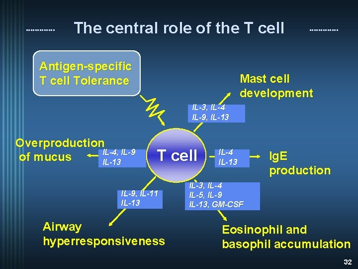The central role of the T cell Antigen-specific T cell Tolerance Mast cell development