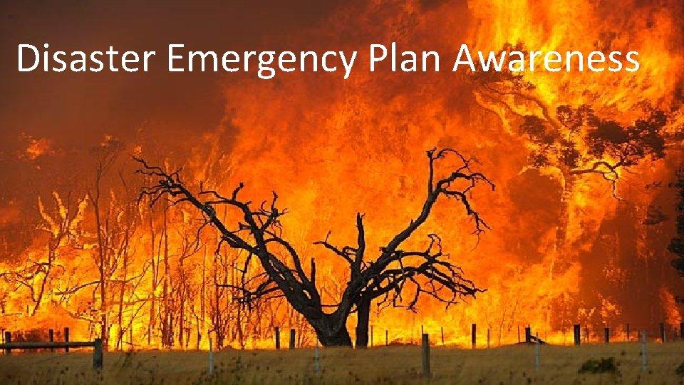 Disaster Emergency Plan Awareness