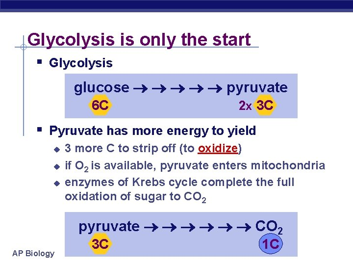 Glycolysis is only the start § Glycolysis glucose pyruvate 6 C 2 x 3
