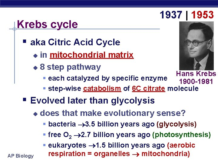 Krebs cycle 1937 | 1953 § aka Citric Acid Cycle in mitochondrial matrix u